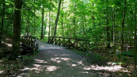 Hiking - Waterfall and Lauriault Trails - Gatineau Park