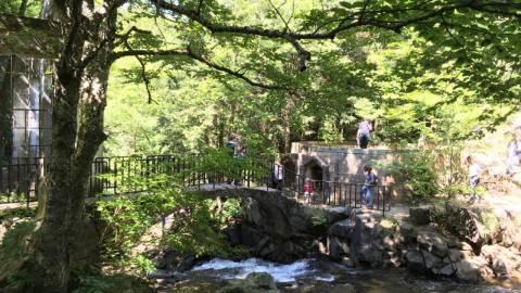 Hiking - Carbide Willson Ruins - Gatineau Park